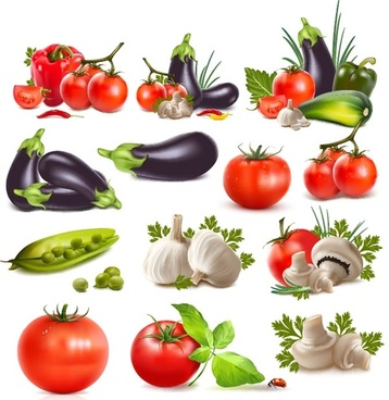 realistic vegetables vector