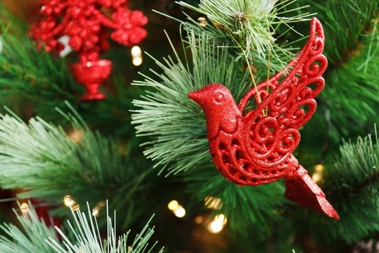 red bird decoration