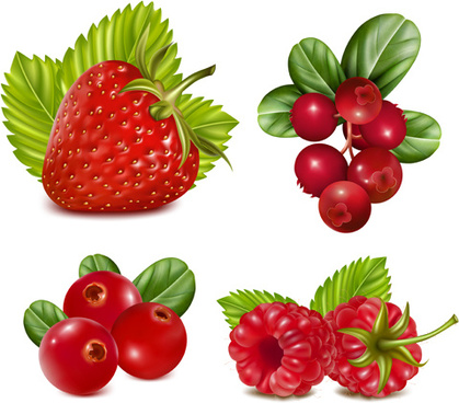 red fruits vector set