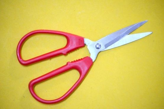 red handle scissors