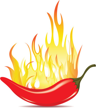 red hot pepper with fire vector
