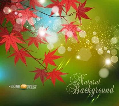 Red Leaf Vector Background
