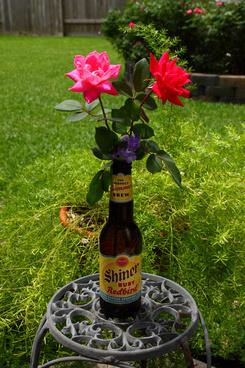 red neck flower vase summer beer ruby redbird ruby red grapefruit juices amp ginger used