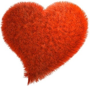 red plush heartshaped picture