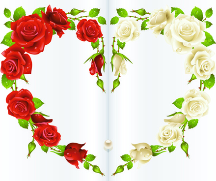 red rose and white rose heart background vector