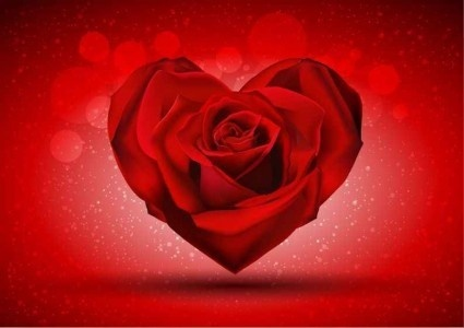 red rose shape heart shiny vector
