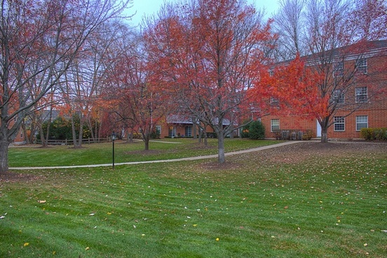 red trees in madison wisconsin
