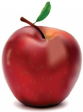 red vector apple food vector art