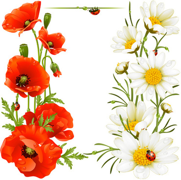 Poppy free vector download 48 free vector for commercial use red with white poppy vector background mightylinksfo