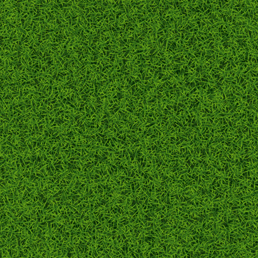 refreshing green grass background vector
