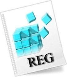 REG File