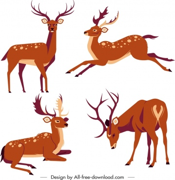 reindeer species icons colored cartoon sketch