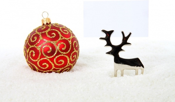 reindeer with bauble