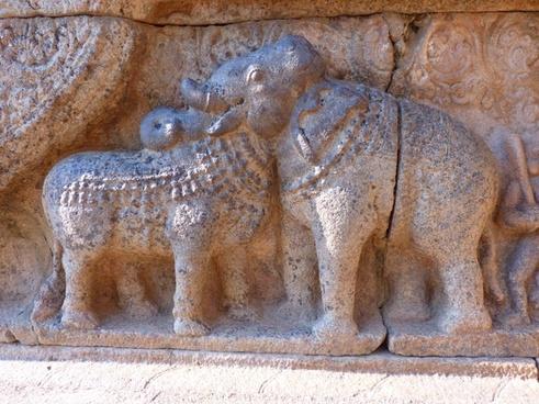 relief bull elephant