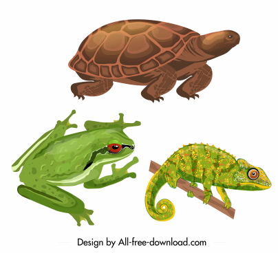 reptile animals icons colored turtle frog gecko sketch
