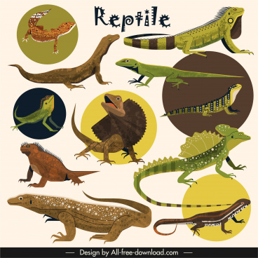 reptile species icons gecko salamander animals sketch