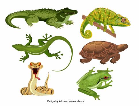 reptiles icons crocodile gecko turtle snake frog sketch