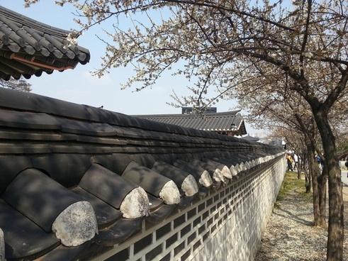 republic of korea fly sheet brick