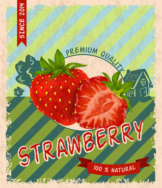 retro fruit poster grunge style vector