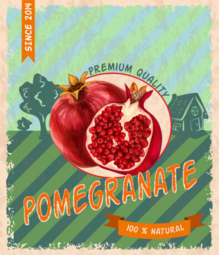 retro grunge pomegranate poster vector