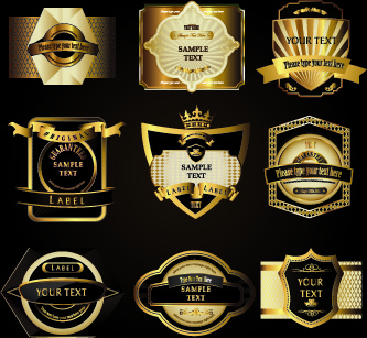 retro label luxury design vector