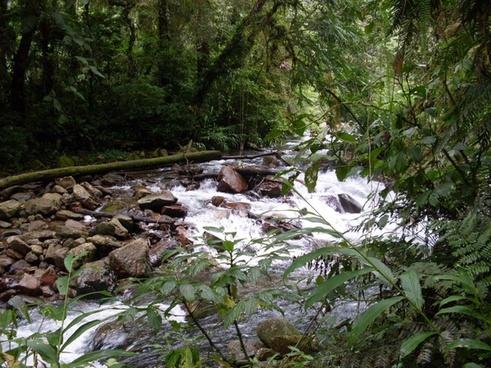 rio landscape nature
