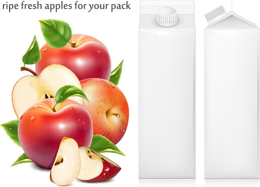 ripe fresh apples with packing vector