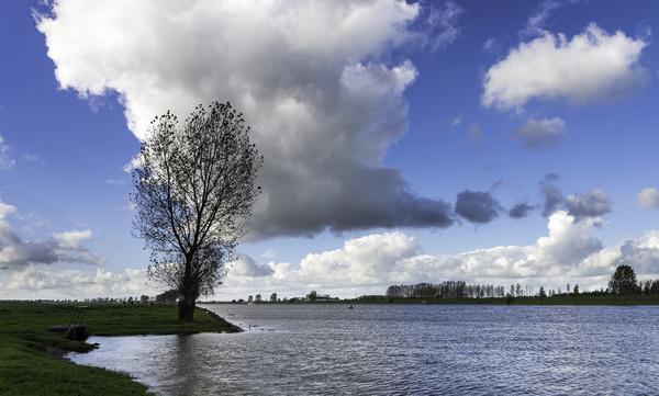 river landscape iii