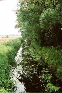 river sosnowica poland