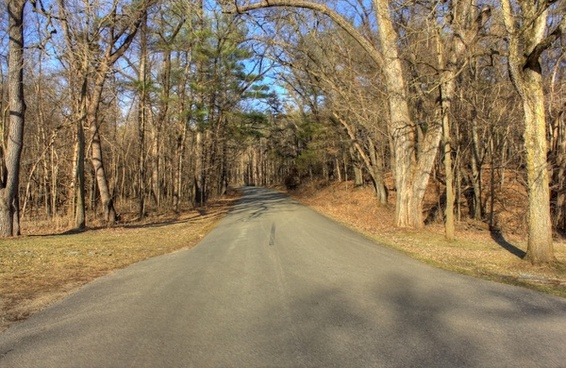 road into the park at backbone state park iowa