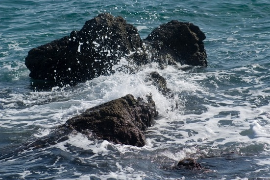 rock sea surf