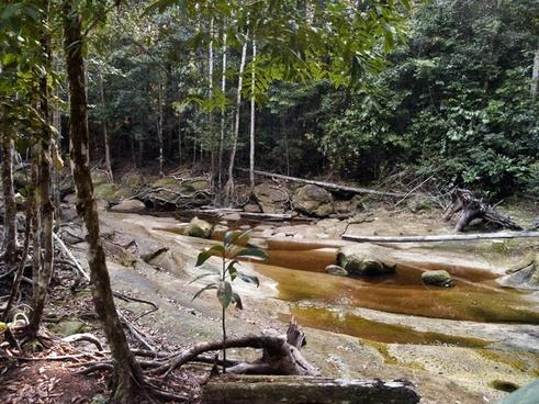 rocky river creek