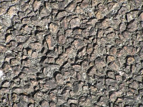 rocky rough texture