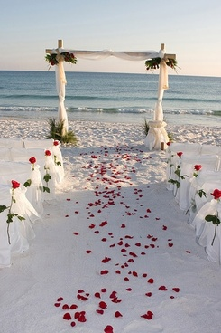 romantic beach wedding pictures 2