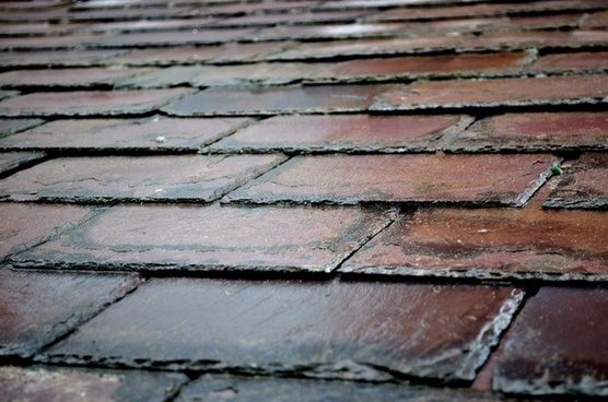 roof covering macro