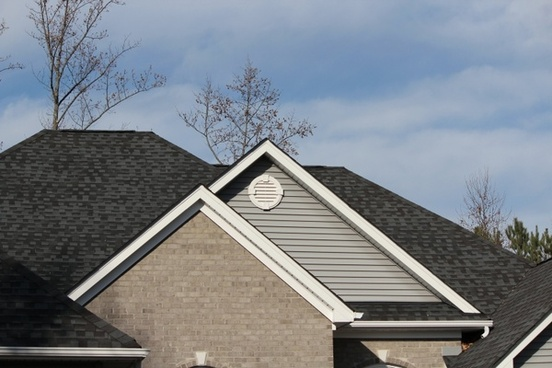 roofline shingles architectural style