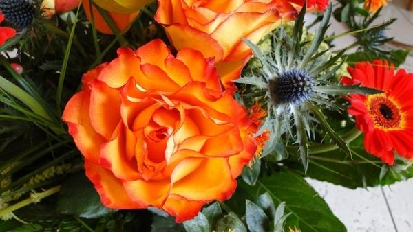 rose flowers strauss