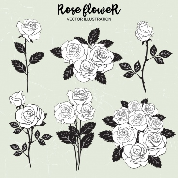 rose icons collection black white outline