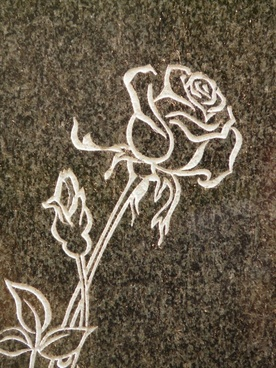 rose tombstone spiny
