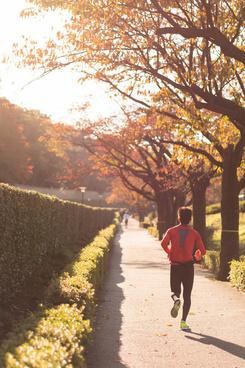runner in the autumn leaves