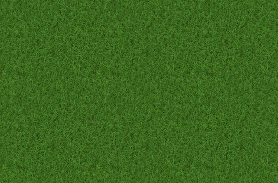 rush grass texture