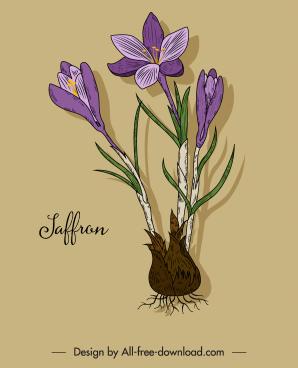 saffron flower icon colored retro design