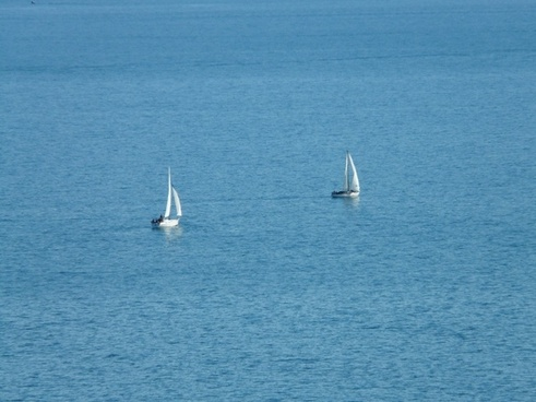 sailing boats sail water