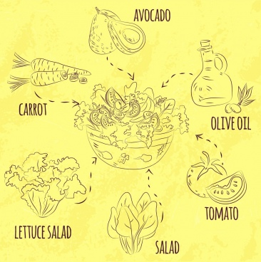 salad cuisine infographic ingredient icons handdrawn sketch