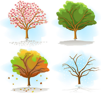 same tree in different seasons