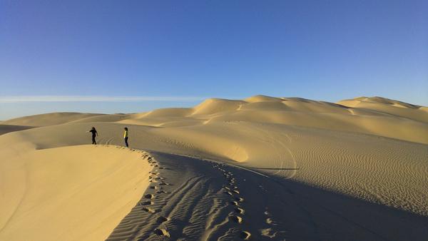 sand explorers