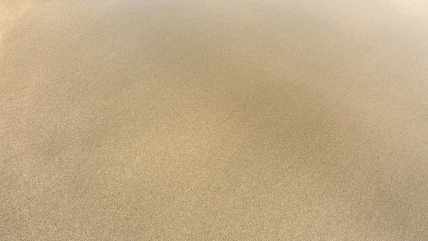 sandy coast sand