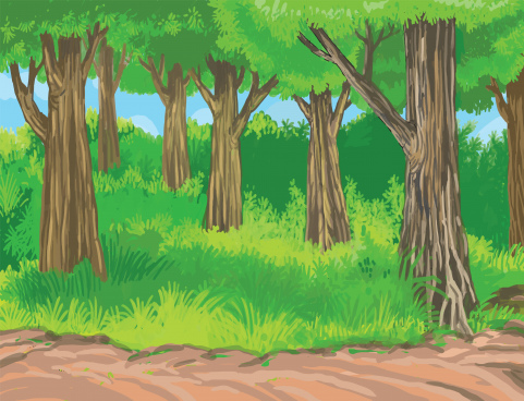 scenery of tropical jungle digital painting illustration