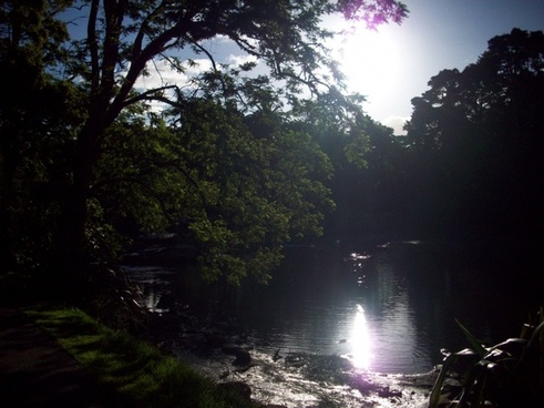 scenic river nz