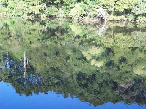 scenic water reflection